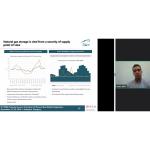 Ando, Balint video presentation on Natural Gas Wholesale Trade