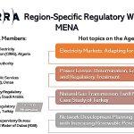 2nd Region-Specific Regulatory Workshop: MENA Region