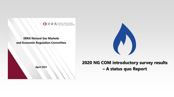 Status quo Report of the ERRA Natural Gas Committee