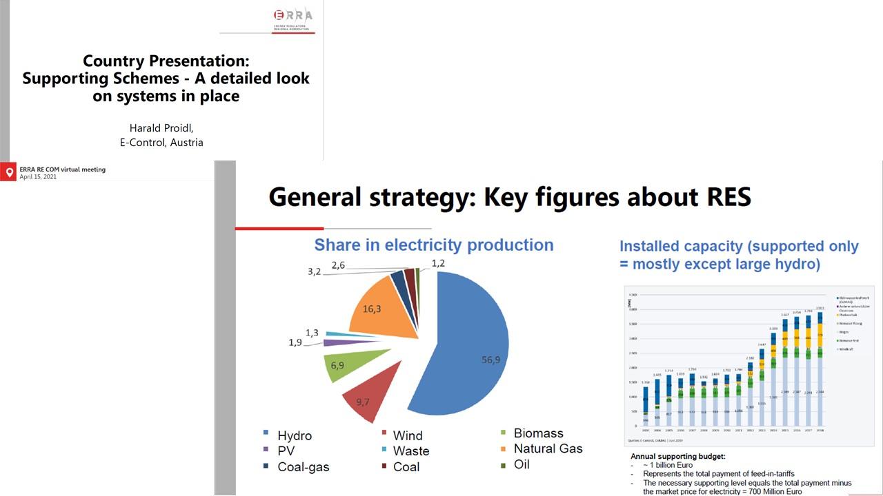 ERRA Renewable Energy Committee meeting